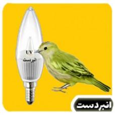 لامپ ترکیبی پرنده (دارای نور زرد و سفید و یو وی) مخصوص روز 3 وات