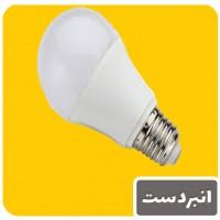 لامپ روز سالن پرندگان 20 وات